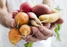 Légumes de saison cultivés localement par des producteurs