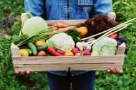 Manger-moins-de-viande-et-si-on-variait-nos-assiettes-panier-fruit-legume-varié