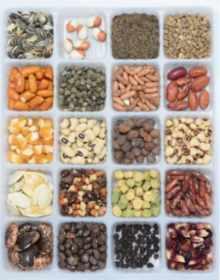 30-recettes-simples-et-rapides-pour-des-repas-sans-viande-sans-carence-en-protéines