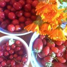 Calendrier-des-fruits-et-légumes-de-saison-en-août-fraise-framboise-jardin